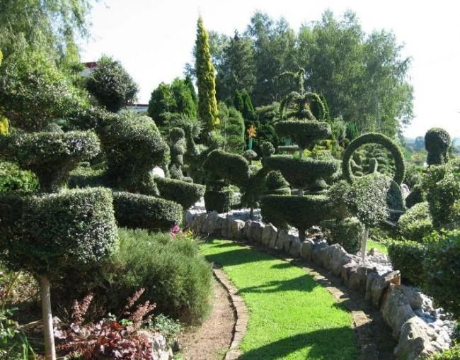Le jardin de topiaire - Jardin topiaire ...